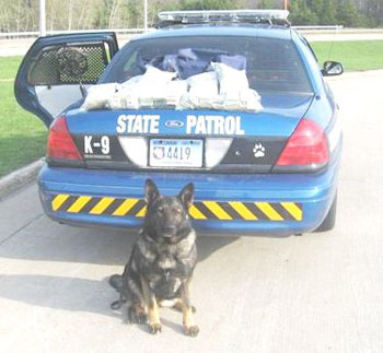 K-9 Ivy began her service in 2006 and retired in 2013.  She conducted 1,800 searches in her career that resulted in seizures totaling nearly $550,000 in currency used for drug transactions.