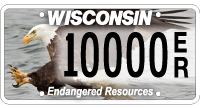 Eagle endangered species license plate