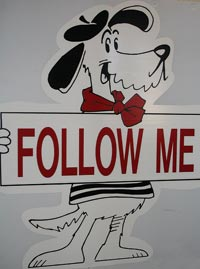 "A white dog holding a sign that says, ""Follow me"""