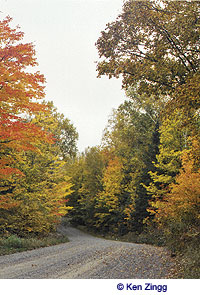 Fall colors along Rustic Road 95